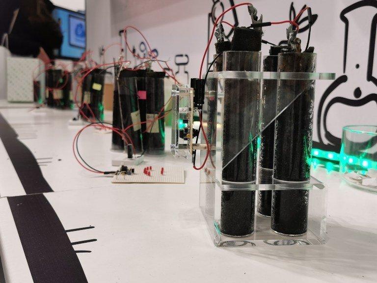 bio battery sustanaible team building