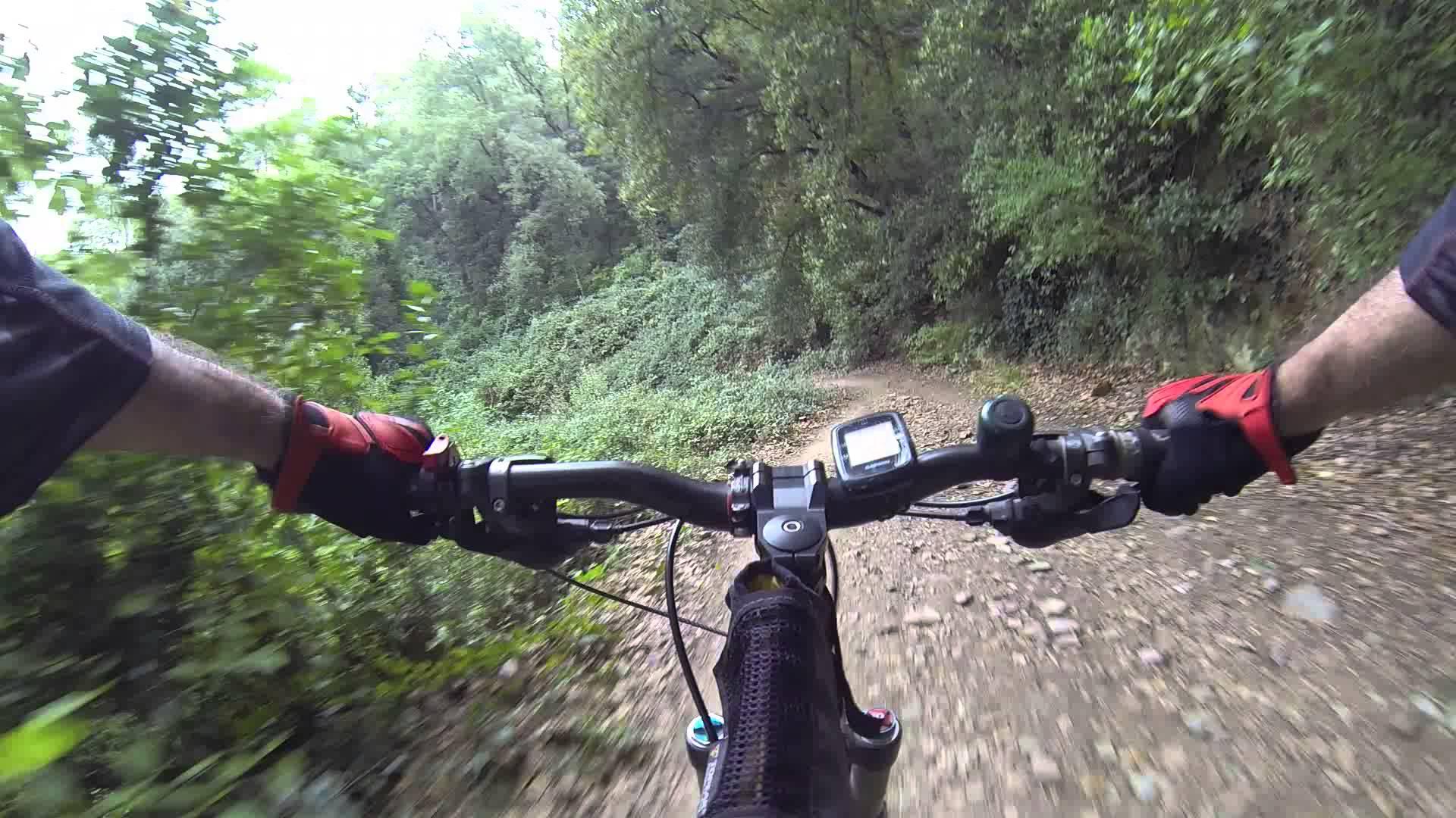 Team building mountain biking collserola